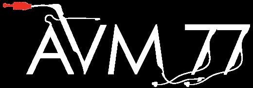 AVM77 Logo